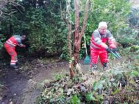 Pat and PJ clear undergrowth that needed cut back